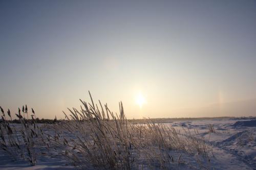 sunrise_halo